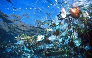 An awful lot of plastic in the sea