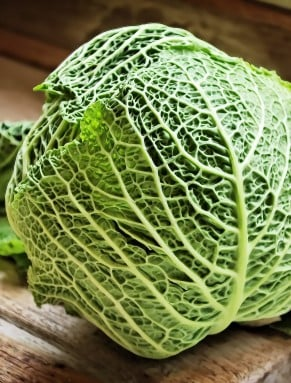 Beauty Myth #7 Loosing weight with the cabbage soup diet